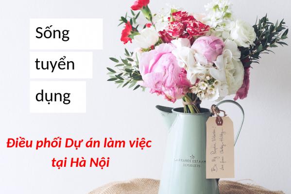 Điều phối Dự án làm việc tại Hà Nội